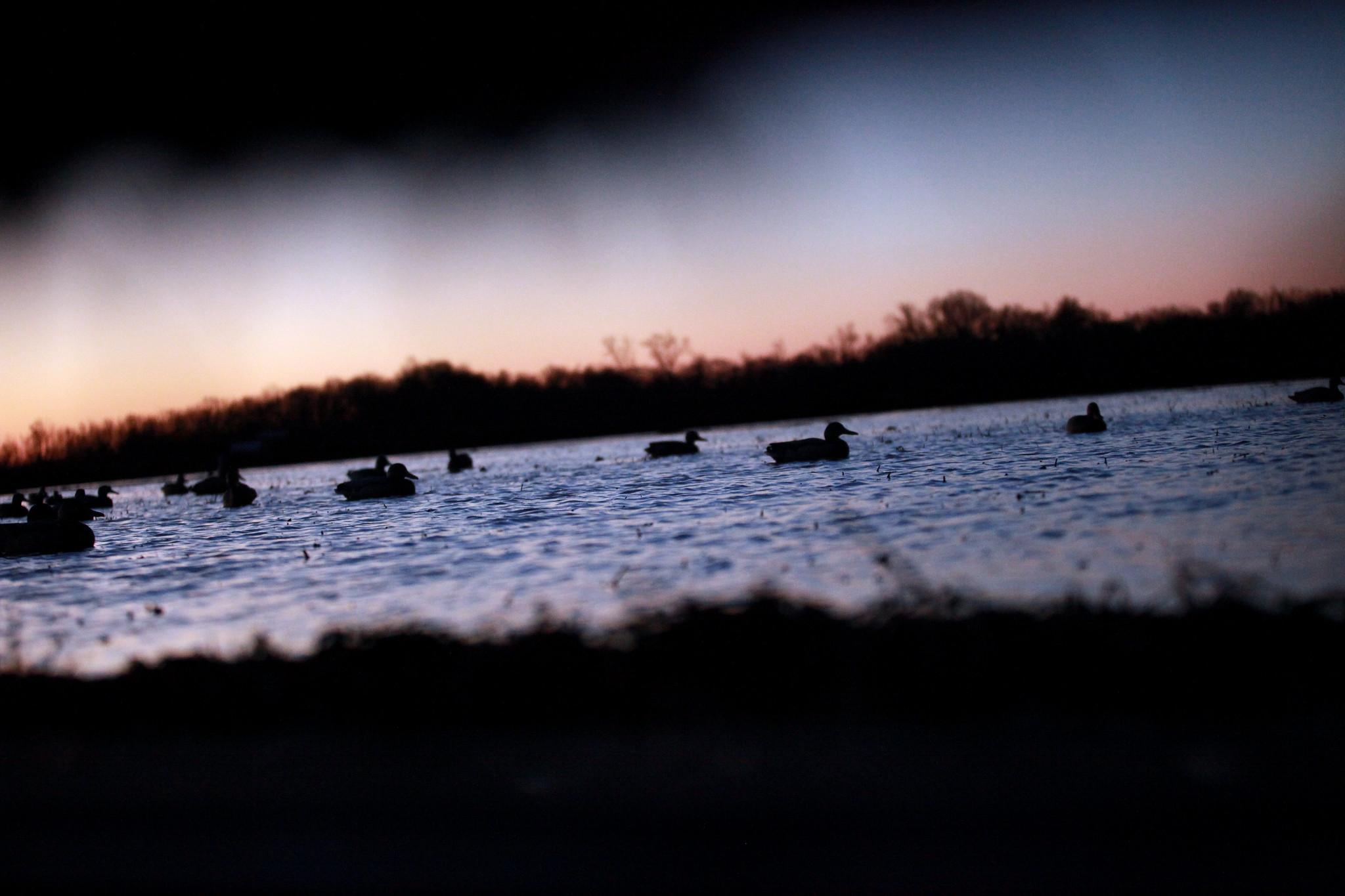 Grand Prairie Sunrise