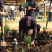 Community Garden Helping Pine Bluff In Hunger Fight