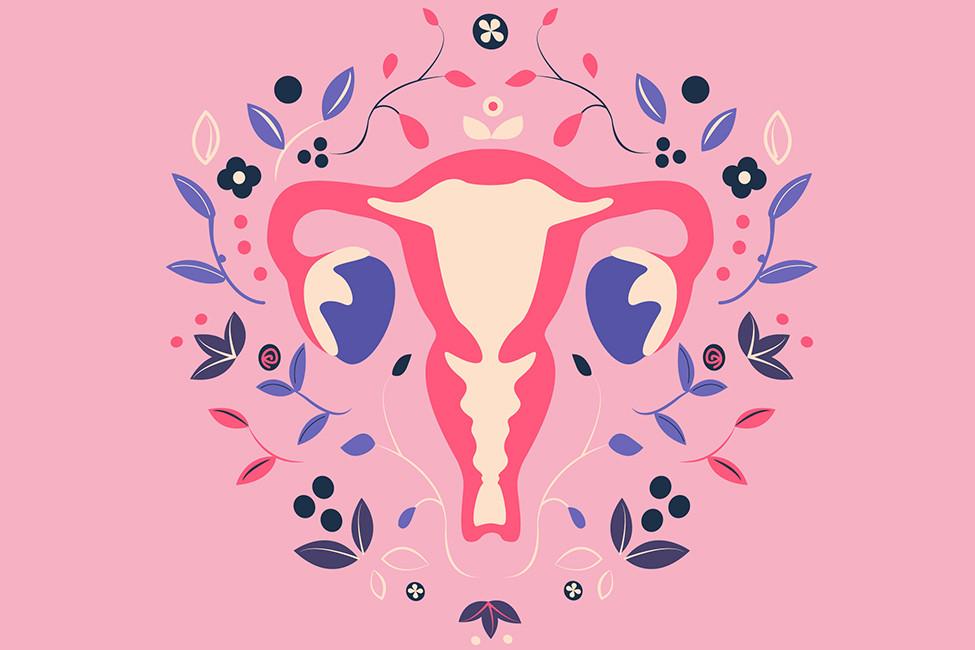 LR SO Feb2021 134471 Period Piece ovaries illustration shstk
