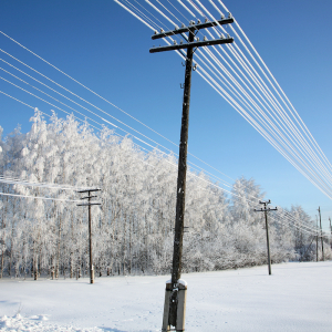 State, Utilities Look at Costs and Lessons of Grid Emergency