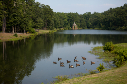 Music in the Wild Outdoor Concert Series Returns to Wildwood Park for the Arts