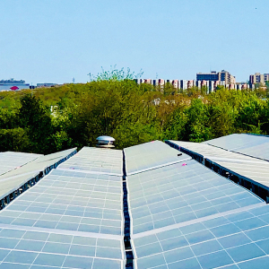 Schools Go Solar: Sun Lights Path from High School to Jobs