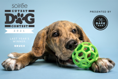 Nominate Your Pup for Soirée's Cutest Dog Contest!