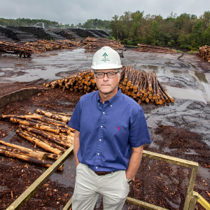 Timber! Record Lumber Prices Fall Back to Earth