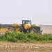 Big Farm Subsidies Surge Is Crisis-Driven, Industry Says