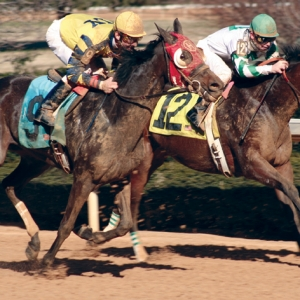 Panel Approves 57 Racing Days in 2014 for Oaklawn