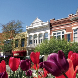 Fayetteville Transforms Block Avenue into Destination (Main Street Preservation   Honorable Mention, 20,000+)