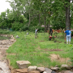 Fayetteville Takes Action to Clean Up Its Water (Green Initiatives   Honorable Mention, 20,000+)