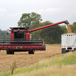 China Waiving Tariff Hikes on US Soybeans, Pork