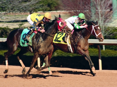 Celebrate the 145th Kentucky Derby at Southern Silks