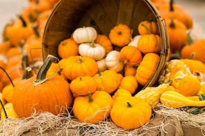 Lunch with Pumpkins & Pearls to Benefit PATH