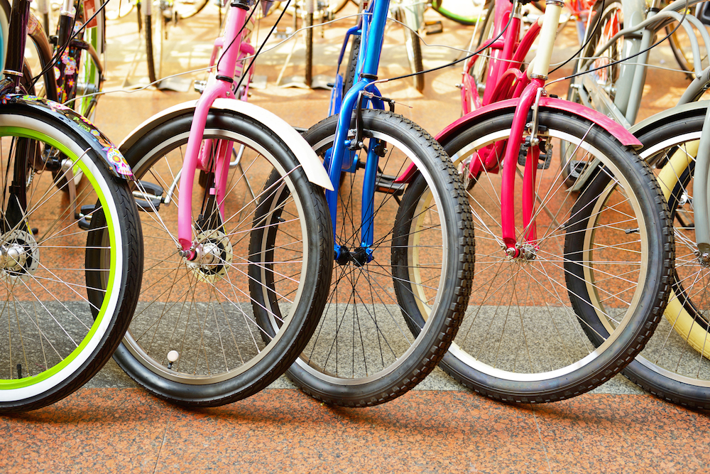 Chainwheel Store to Be Sold to Trek Bicycle