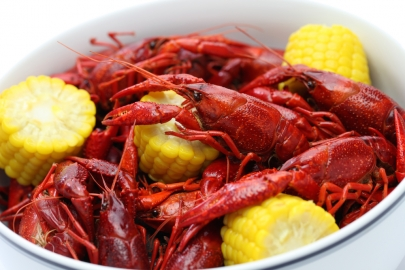 End Your Mudbug Cravings at the 10th Annual Hat Club Crawfish Salute