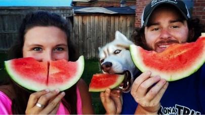 Meet Little Rock Family's 2016 Cutest Family Pet Contest Winners!