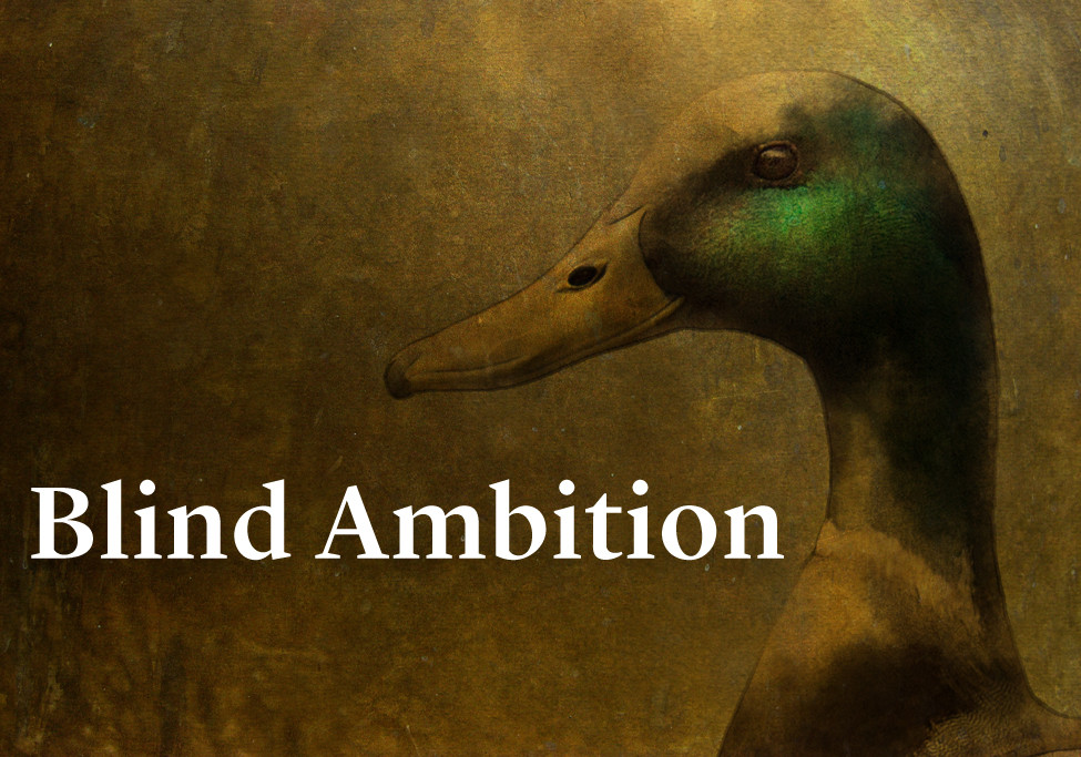 Blind Ambition: Greenhead Executive Q and A