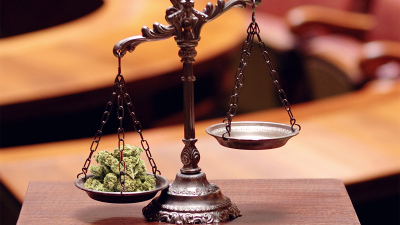 Medical Marijuana Licensing Tests Scales of Justice