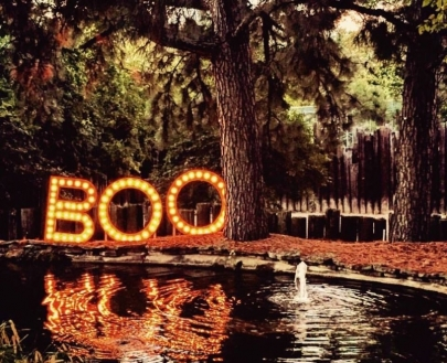 Enter Our Boo at the Zoo Giveaway!