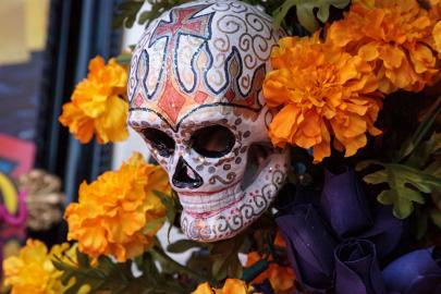 Halloween Movies & Dia de Los Muertos Alley Party Coming to Downtown
