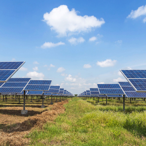Solar: A Bright Forecast (Heather Nelson Commentary)