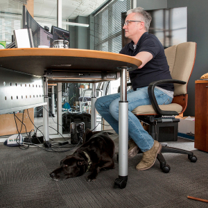 Some Companies Say Dogs Make for a Lower-Stress Workplace