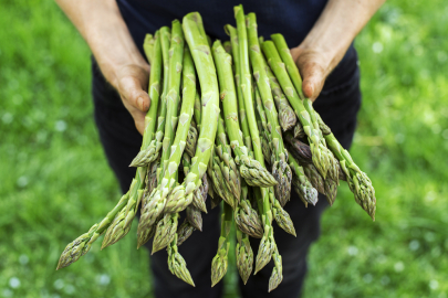 What to Buy at Farmers Markets in May