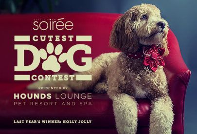 Round 1: Vote for Soirée's Cutest Dog!