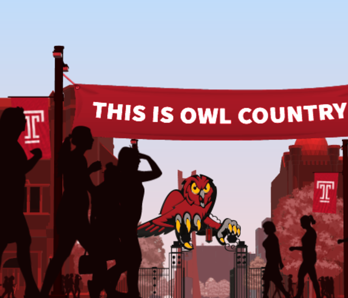 Temple owls country