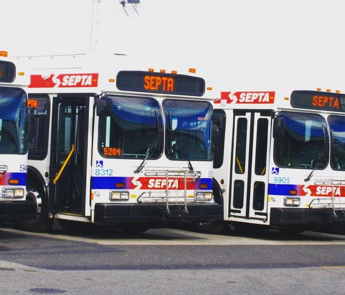 Buses dnc