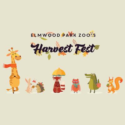 Elmwood harvestfest updated 9.9.2019800x800