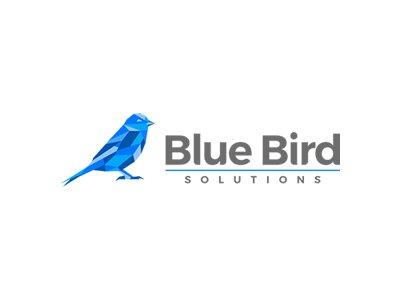 .:: Blue Bird Solutions ::.