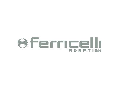 .:: Ferricelli ::.