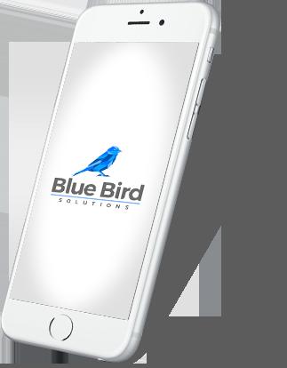 Blue Bird Solutions