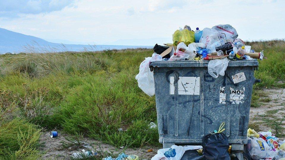 Conheça as medidas de prevenção, mitigação e remediação ambiental