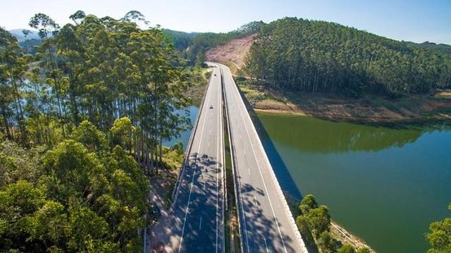 Maior projeto de reflorestamento do estado de SP é concluído