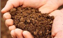 Análises de solos, folhas e insumos agrícolas