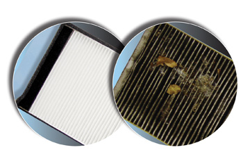 Cabin Air Filter Replacement Knowyourparts