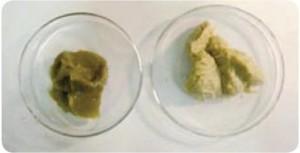 bearing contamination from water