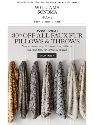 30% Off Faux Fur Throws & Pillows – Today Only!