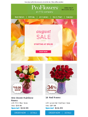 AUGUST SALE - gifts starting at $19.99! 💐🌵