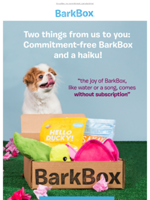 Scout from BarkBox - scout@woof.barkbox.com