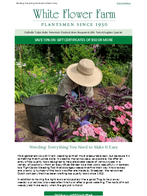 White flower farm email example its planting time related email 2 mightylinksfo
