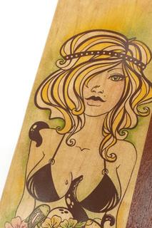 Saltwater vix detail illus pintail