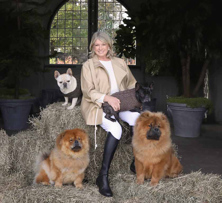 Martha stewart cbd for pets