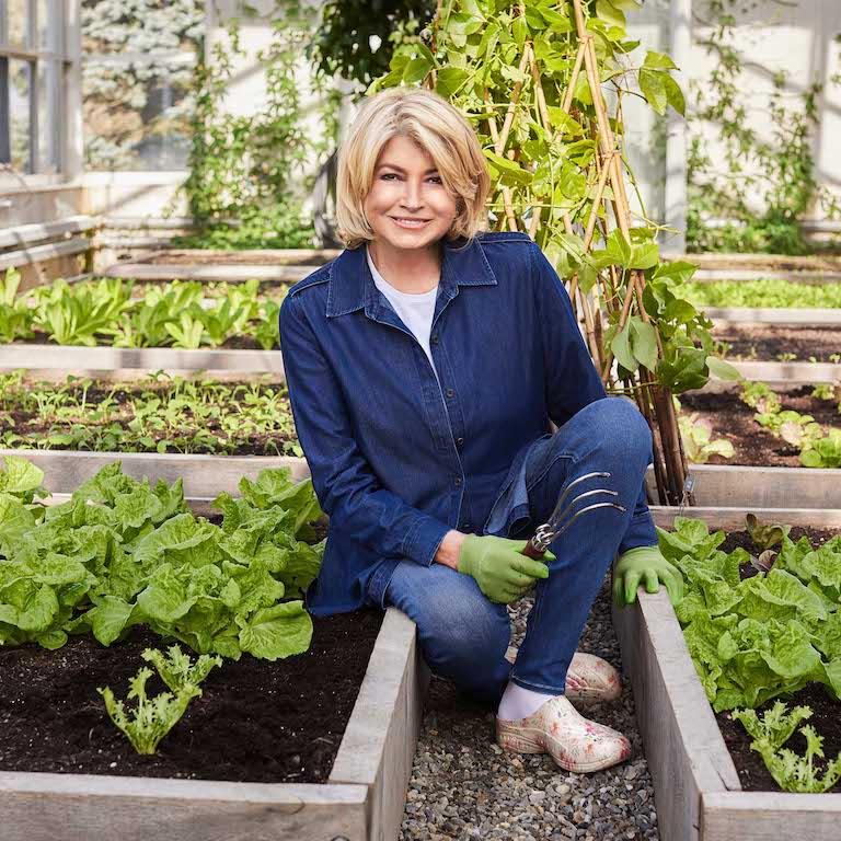 Martha stewart easy spirit web