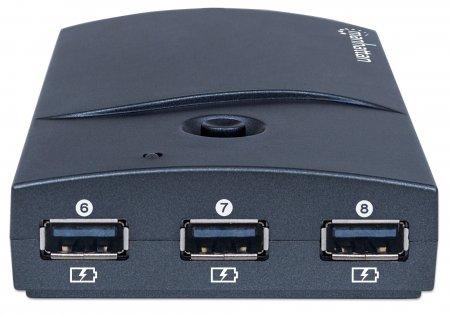 Hi-Speed 13-Port Desktop USB Hub