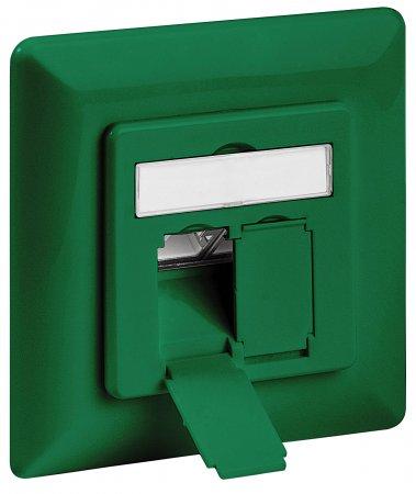 Cat6A-Unterputzdose, geschirmt INTELLINET 2 Ports, FTP, grün