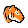 Tiger hacks logo 03