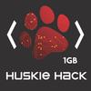 Huskieblack paw