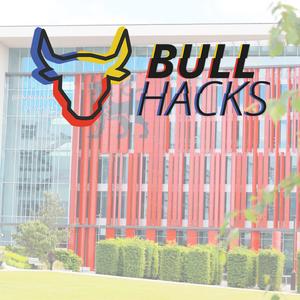 Bullhacks logo