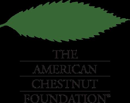 Logo for American Chestnut Foundation